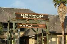 jacksonvillezoo