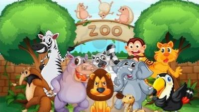 visit a zoo