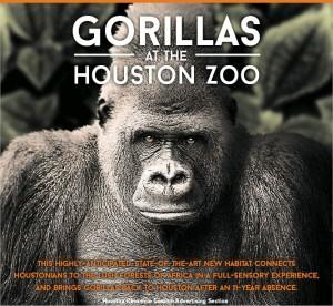 houston-gorillas