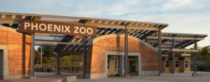 phoenix-zoo