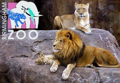 birm-zoo2